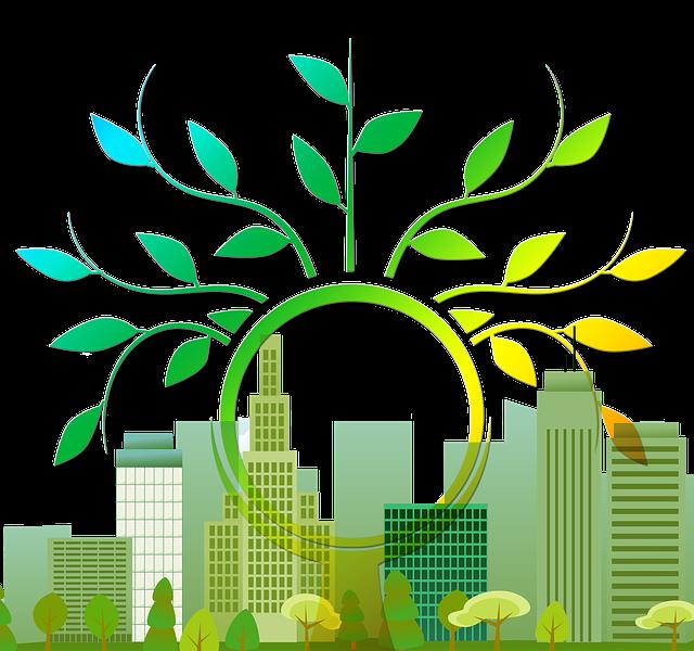 UFIL es un laboratorio urbano de emprendimiento basado en lo rural