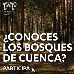 Encuesta bosques Cuenca