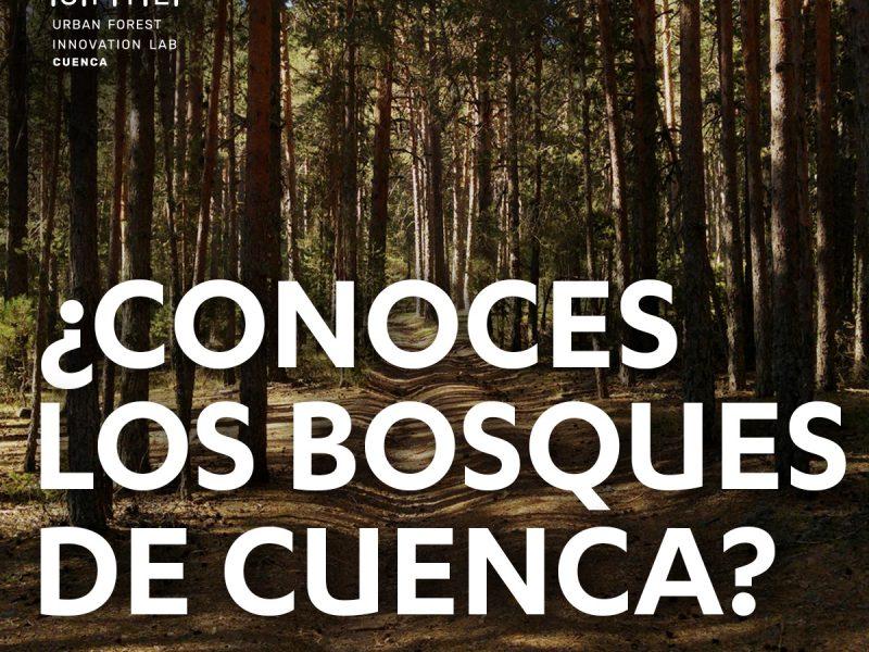 Lanzamos encuesta ¿Conoces los bosques de Cuenca?